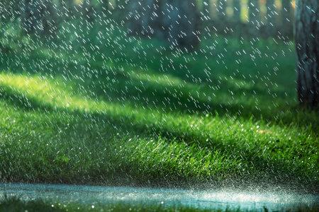 Raindrops fall on the asphalt in the park. Wet asphalt weather song.