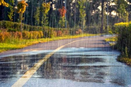 Night rain. Drops fall on the wet cold asphalt.