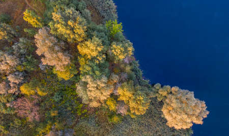 A small island on the lake with yellow autumn trees.