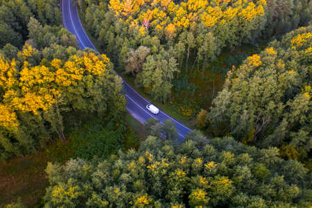 Road through the autumn forest at sunset. Drone type. Фото со стока