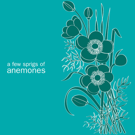 a few sprigs of anemones on turquoise background Vector