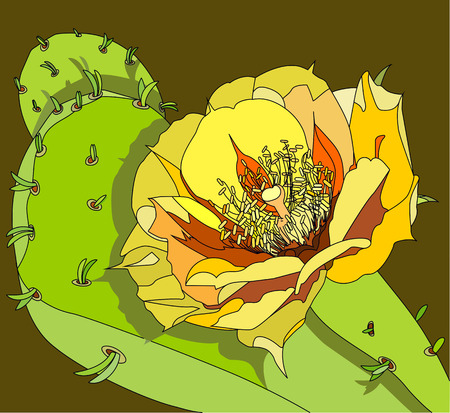 prickly fruit: flower of the prickly pear Illustration