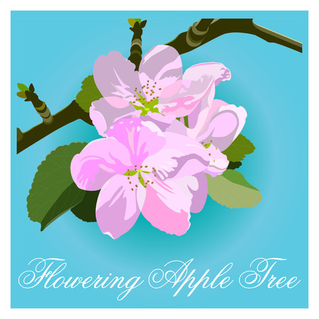 Blossoming tree branch with white flowers on blue background. Vector illustration