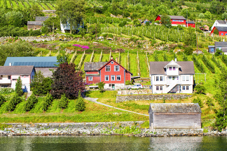 hardanger: Norway shore with view. Hardanger Fiord. Norway. Stock Photo