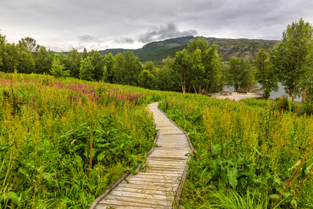 Wooden walkway to the viewpoint of beautiful fjord  among meadow of flowers,  on cloudy day, Nothen Norway. Reklamní fotografie