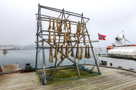 Rack full of dried codfish on the typicall pier for fishing boats  in Northern Norway.