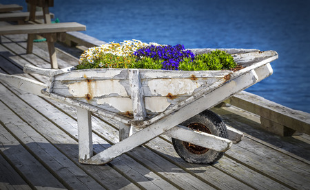 Vintage white wooden cart decorated with blooming flowers Reklamní fotografie