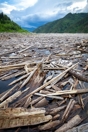 hydroelectricity: Driftwood in a river near a dam of a hydro power plant Stock Photo