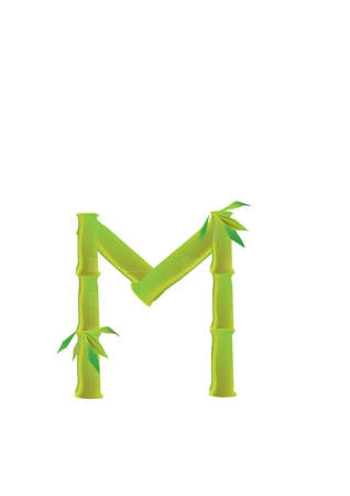 Vector Font made of split bamboo, white background. Vector