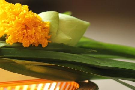 Marigold and pandan for worship on a golden tray. photo