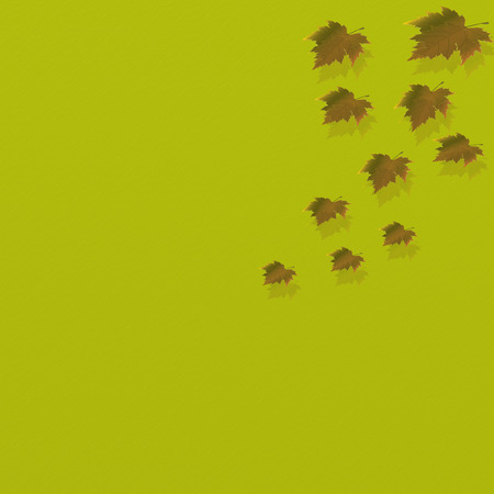 Bright yellow leaves and decorative lighting. photo