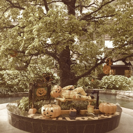 pumkin: Halloween display Stock Photo