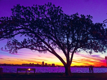 colorful: Colorful sunset in Perth