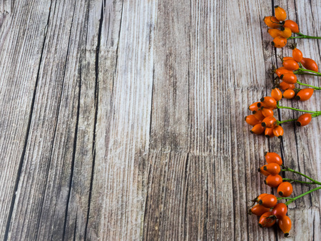 pattered: Autumnal background: fruits of dog rose on wooden background