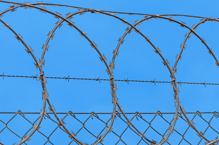 barbed hook wires: closeup of barbed wire isolated on blue sky Stock Photo