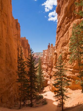 Hiking trail at Bryce Canyon, Utah, United States Stock Photo