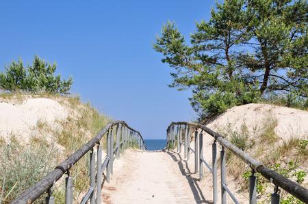 Path through dunes to the ocean