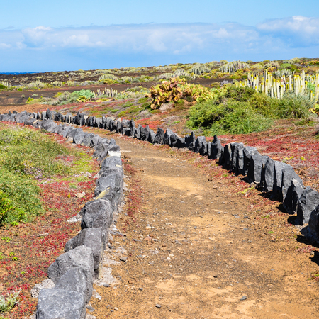 quadratic: Hiking trail throught the nature of Tenerife, Canary Islands; Path through the landscape of Tenerife, Canary Islands Stock Photo