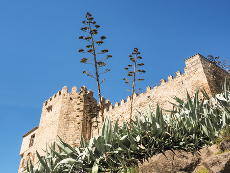 Monastery des los reyes with agaves, Toledo, Spain