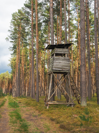 High seat for hunting in a forest in Germany