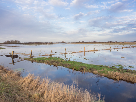 Flooded meadows at swamp Teufelsmoor in Germany near city Worpswede