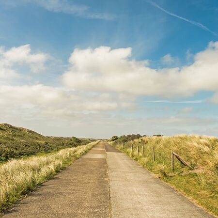 Road through the dunes of district Waterleidingduinen near to the cities Zandvoort and Amsterdam in the Netherlands