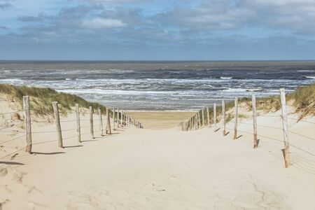 Path trough the dunes to the beach of Zandvoort, Netherlands