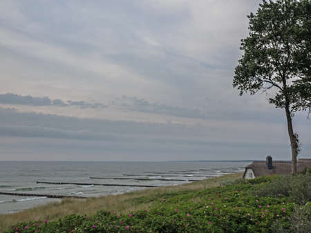 Thatched house at the beach of Baltic Sea at twilight, Germany Standard-Bild