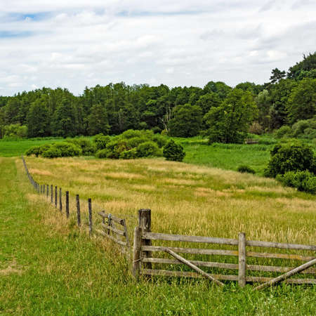 Landscape in Mecklenburg-Western Pomerania with meadows and fence, Germany Standard-Bild