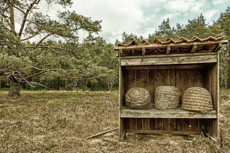 Three beehives in the nature reserve