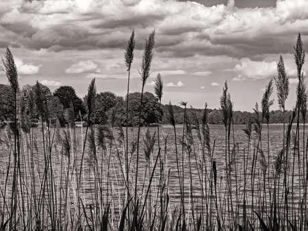 Sepia toned image of lake