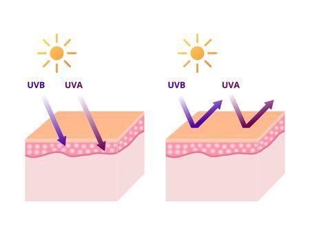 UVA and UVB radiation types, UV protection sun block vector illustration Illustration