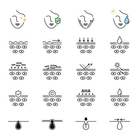 Skin care, beauty treatment, skin layers, pores vector icons set 向量圖像