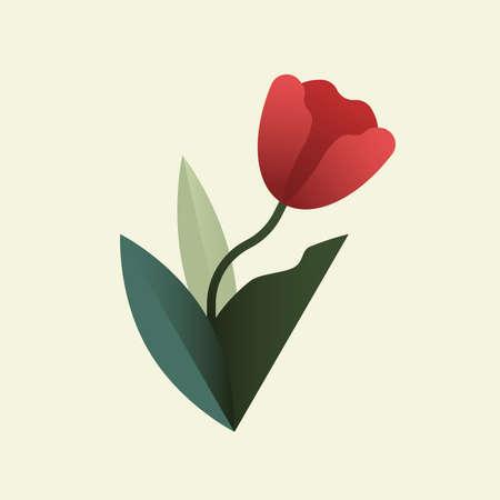 Tulip vector illustration red flower 向量圖像
