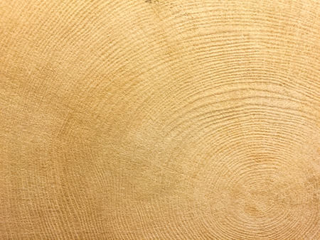 wall tile: natural wood wall tile pattern