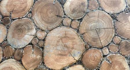 wood log background tile Reklamní fotografie