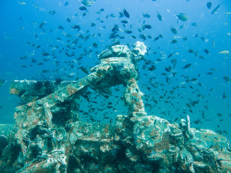 schooling yellow tailed fish with wrecked ship in gulf of Thailand Reklamní fotografie