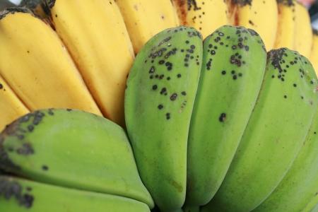 ripen: raw and ripen banana