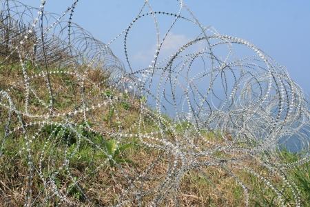 bared wire photo