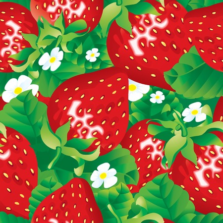 Vector seamless pattern of fresh red strawberry Vector