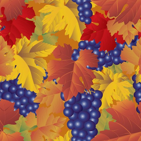 Vector grapes background (seamless pattern) Vector
