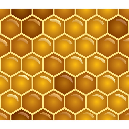 honeycombs: Vector honey background (seamless pattern) Illustration
