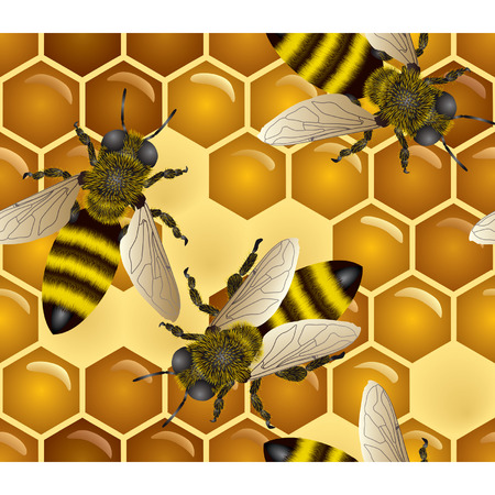 mead: Vector honey background (seamless pattern) Illustration