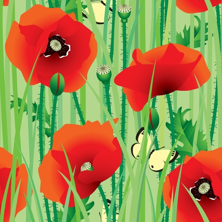 Vector seamless of scarlet poppy with butterfly Vector