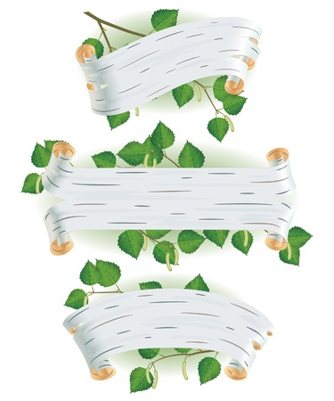 Banners in the form of birch bark with birch branches Vector