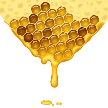 hive: La miel que fluye de fondo. Ilustraci�n vectorial.