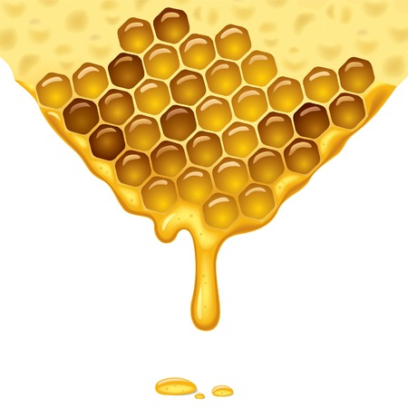 fruttosio: Scorre miele sfondo. Vector illustration.