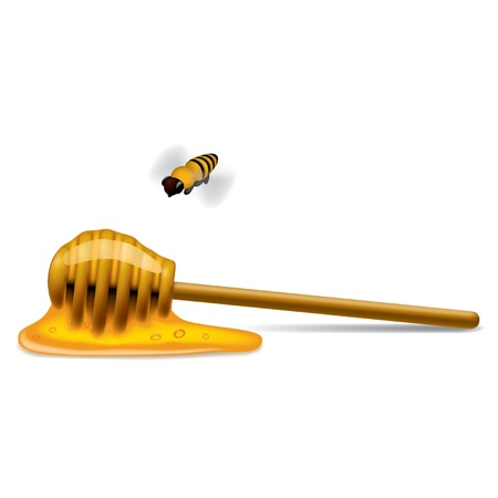 mead: Vector image of honey stick with a bee  Illustration