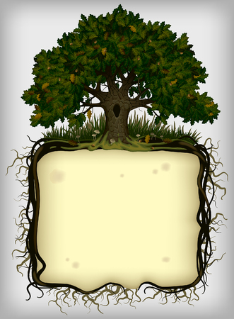 Oak tree with roots frame. Vintage artistic banner and page design. Vector illustration
