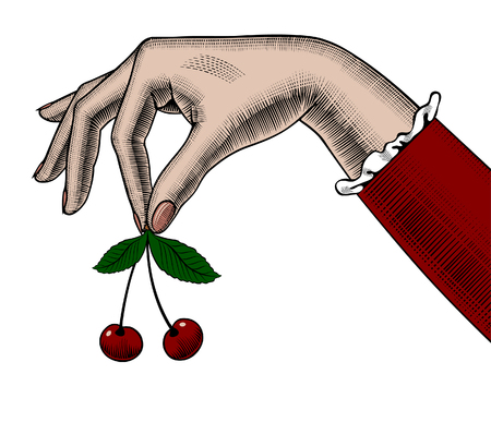 Woman's hand holding cherries in her fingers. Retro design element. Vintage engraving stylized drawing. Vector illustration